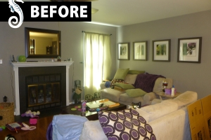 premier-home-staging-florida-occupied-1