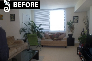 premier-home-staging-occupied-dade-florida-a